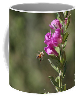 Bee Flying Towards Ultra Violet Texas Ranger Flower Coffee Mug