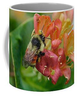Coffee Mug featuring the photograph Bee On Wild Honeysuckle by Ann E Robson