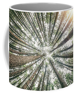 Below The Treetops Coffee Mug