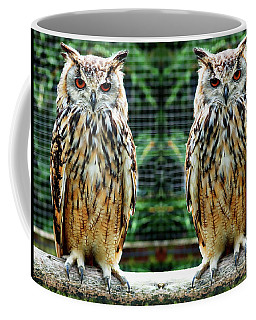 Coffee Mug featuring the photograph Bengalese Eagle Owls by Anthony Dezenzio