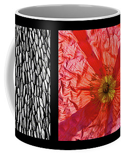 Coffee Mug featuring the photograph Bento Box 1 by Mark Shoolery