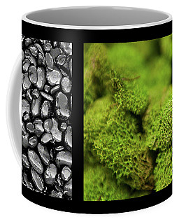 Coffee Mug featuring the photograph Bento Box 6 by Mark Shoolery