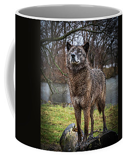Best Of Show Pose Coffee Mug