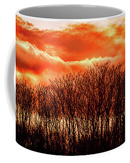 Bhrp Sunset Coffee Mug