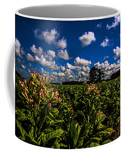 Big Sky Tobacco  Coffee Mug