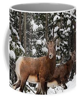 Bighorn Sheep In Deep Snow Coffee Mug