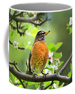 Birds - American Robin - Nature's Alarm Clock Coffee Mug