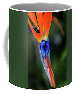 Birds Of Paradise Up Close Coffee Mug