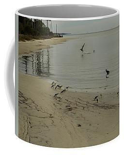 Birds On Beach Coffee Mug