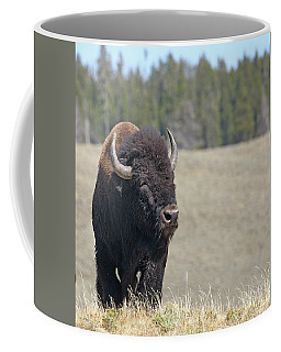Bison In Hayden Valley Coffee Mug