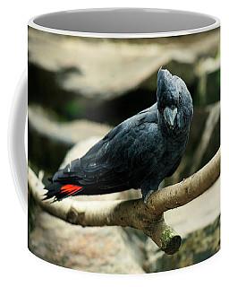 Black And Red Cockatoo. Coffee Mug