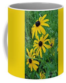 Black Eyed Susans 1 Coffee Mug