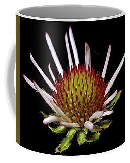 Black Sampson Coffee Mug