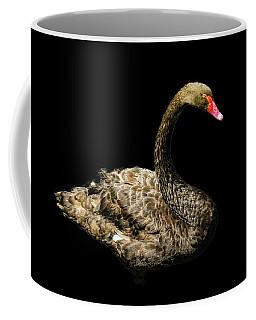 Black Swan On Black  Coffee Mug