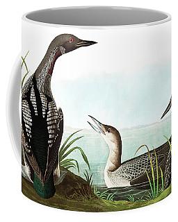 Black Throated Diver, Colymbus Arcticus By Audubon Coffee Mug