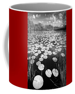 Black Water Coffee Mug