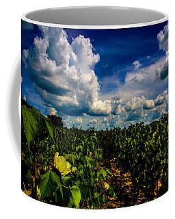 Blooming Cotton  Coffee Mug
