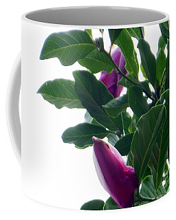 Coffee Mug featuring the photograph Blossoming Magnolias by Rockin Docks