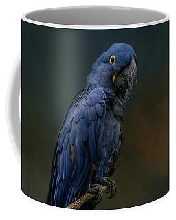 Blue Beauty Coffee Mug