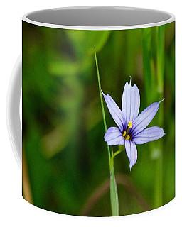 Coffee Mug featuring the photograph Blue Eyed Grass by Ann E Robson