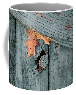 Blue Fence Coffee Mug