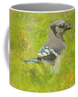 Blue Jay On The Ground. Coffee Mug