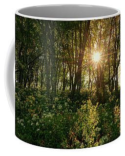 Blue Ridge Parkway - Last Of Summers Light, North Carolina Coffee Mug