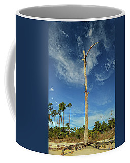 Blue Skies And Broken Branches Coffee Mug