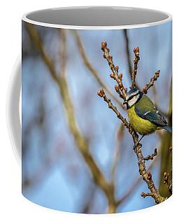 Blue Tit 02 Coffee Mug