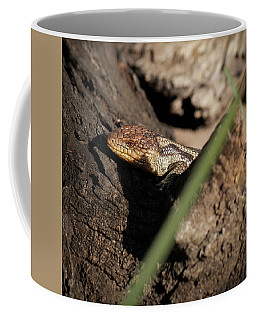 Blue Tongue Lizard Coffee Mug