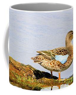 Blue-winged Teal Female Duck Coffee Mug