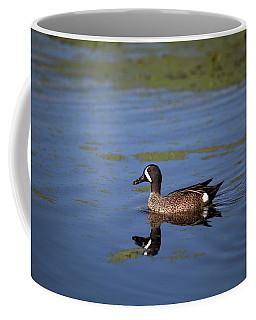 Blue Winged Teal Coffee Mug