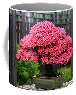 Bonsai Pink Azalea View Coffee Mug
