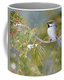 Boreal Chickadee In Winter Coffee Mug