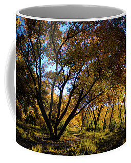 Bosque Color Coffee Mug