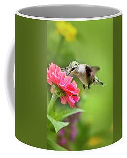 Botanical Hummingbird Coffee Mug