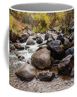 Boulders In Creek Coffee Mug