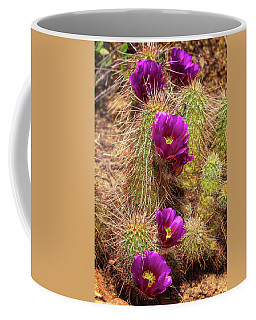 Coffee Mug featuring the photograph Bouquet Of Beauty by Rick Furmanek
