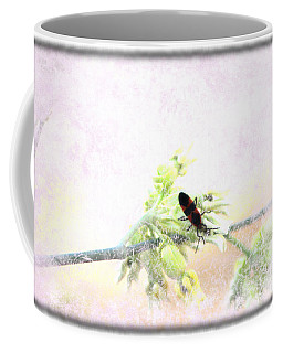 Boxelder Bug In Morning Haze Coffee Mug