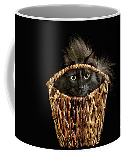 Boyfriend In A Basket Coffee Mug