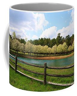 Bradford Pear Trees Blooming Coffee Mug