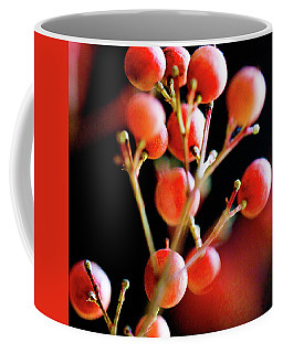 Coffee Mug featuring the photograph Brazilian Pepper 0423 by Mark Shoolery