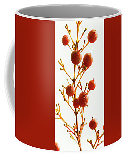 Coffee Mug featuring the photograph Brazilian Pepper 0482 by Mark Shoolery