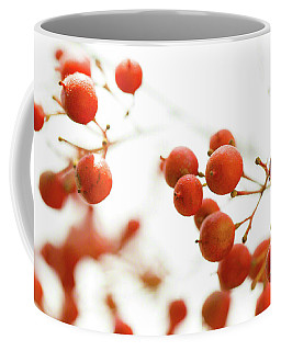 Coffee Mug featuring the photograph Brazilian Pepper 0493 by Mark Shoolery