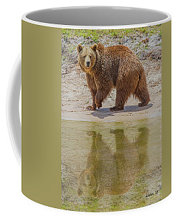 Brown Bear Reflection Coffee Mug