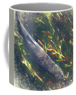 Brown Trout Hunting Prey. Coffee Mug