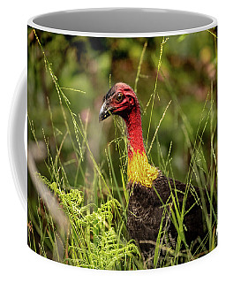 Coffee Mug featuring the photograph Brush Turkey by Chris Cousins
