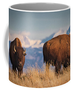 Buffalo Grazing At Dawn Coffee Mug