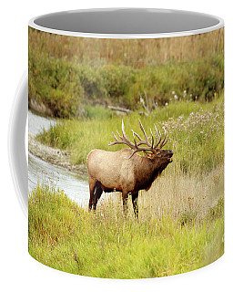 Bugling Coffee Mug