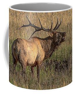 Bugling Bull Elk 7777 Coffee Mug